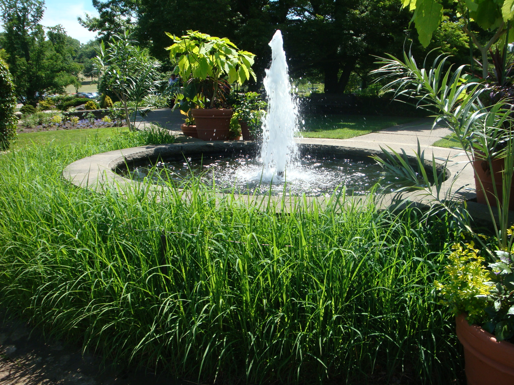 Formal water features in landscape design revolutionary for Water features